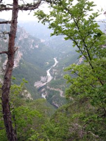 Tarn Gorge from the causse above Sainte Enimie
