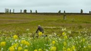 Ring of Brodgar (Ork)