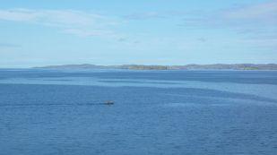 Across Enard Bay