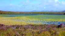 Loch Garvie