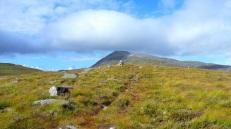 The path to Loch Fada