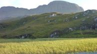 Reeds and that mountain