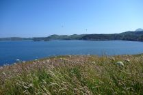 Green Island.