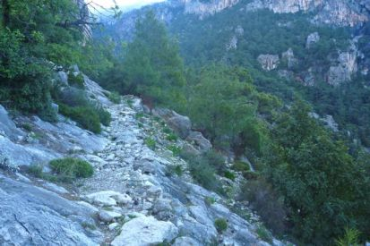 Out of Kabak