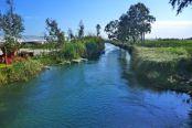 Ozlem stream