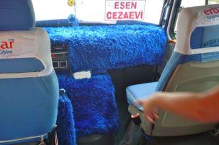 Furry bus ride