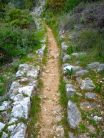 Path is the aqueduct